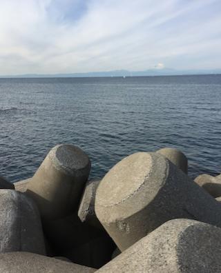 三戸浜海岸_テトラ1.png