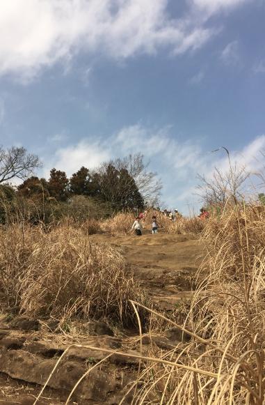 大平山.png